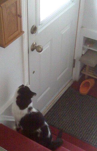 Open damn you! Open!: Open! Open! Open! Open! Open! Open! Open! Open!